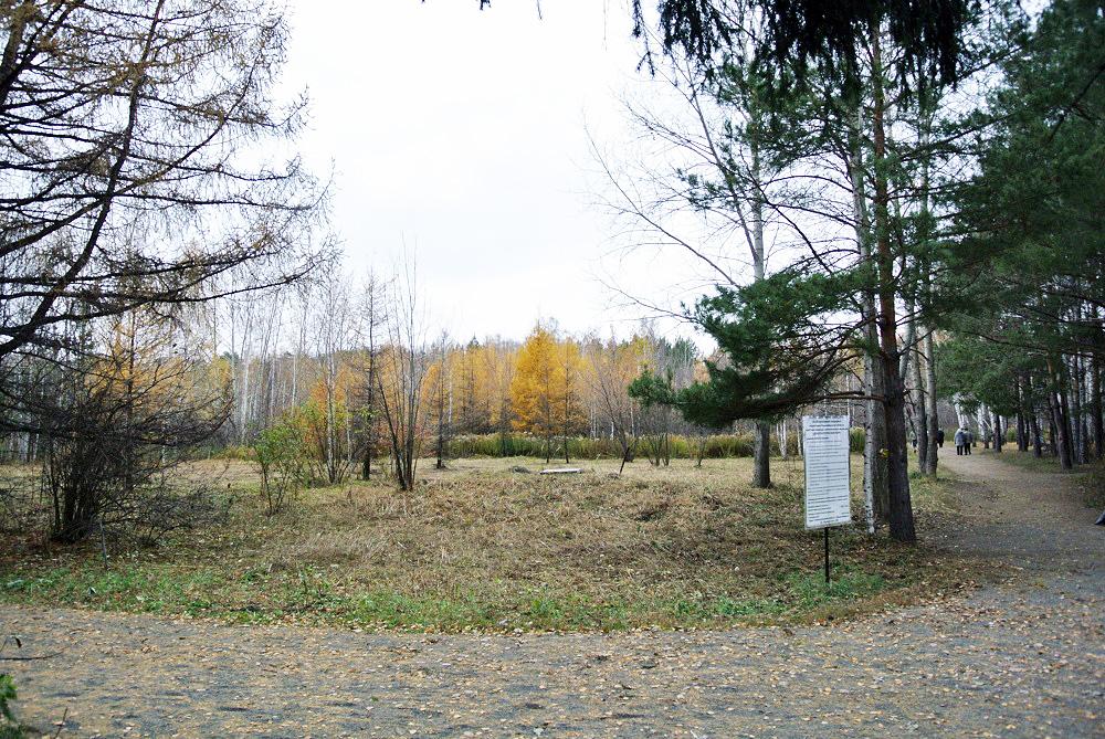 Городская ферма и арт-объект могут появиться в новосибирском Дендропарке
