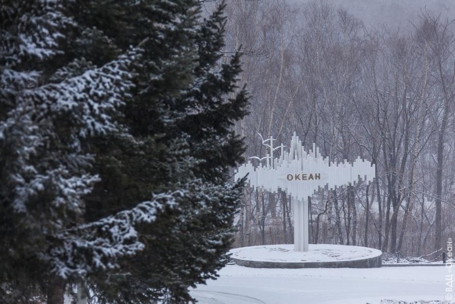 В Новосибирске откроется координационный центр «Океана»