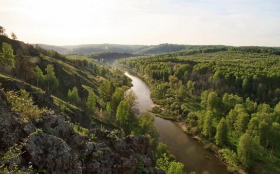 Более 10 тысяч жителей Новосибирской области приняли участие в мероприятиях в честь Международного дня лесов