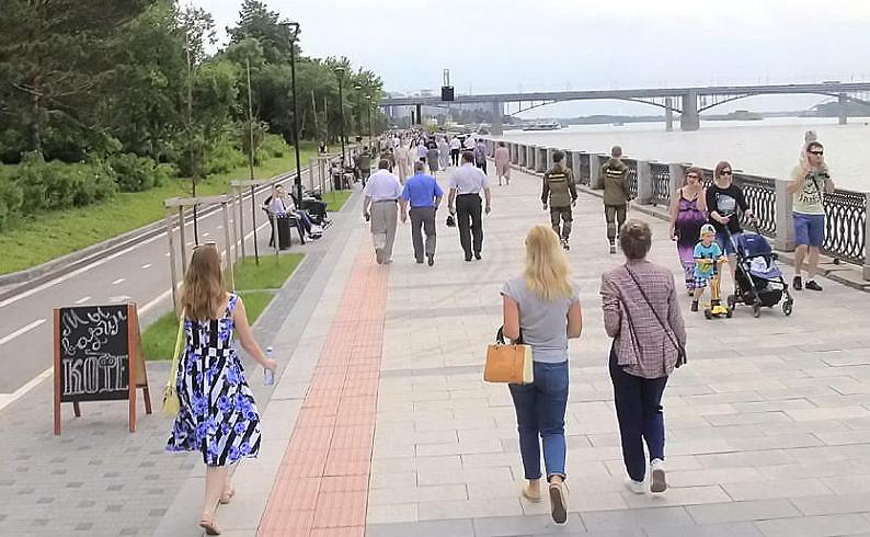 Новые яблони «Рудольф» высадят на Михайловской набережной в августе