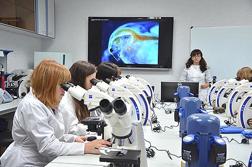 Ученые российских вузов смогут получить многомиллионные гранты на проведение научных исследований
