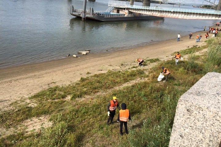 Новосибирские студенты посоревновались в сборе мусора на берегу Оби