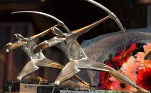 В жюри «Серебряного лучника» вошли студенты новосибирских вузов