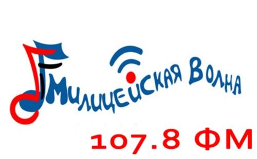 """Первая интернет-конференция """"Здоровье и безопасность"""" прошла в НГПУ"""