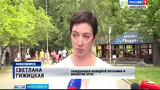 В Центральном парке Новосибирска появится новое колесо обозрения