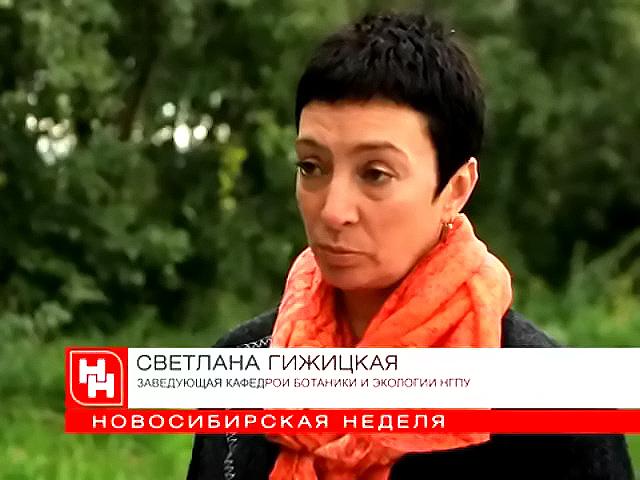 Новосибирцы неофициально открыли обновлённую Михайловскую набережную