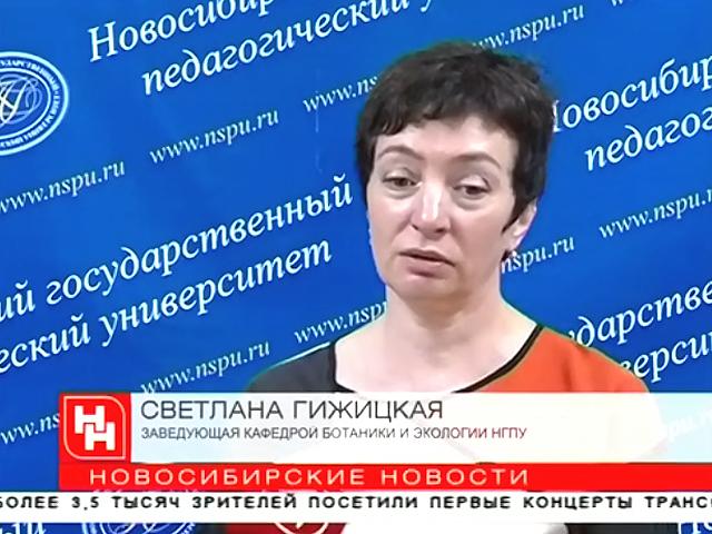«Правильные» деревья очистят воздух в Новосибирске